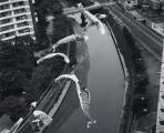 川は流れて港ヨコハマ