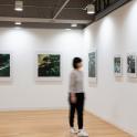 「新・今日の作家展2019 対話のあとさき」原美樹子《Kyrie》2009-2019年 展示風景 photo:Ken KATO