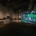 「新・今日の作家展2019 対話のあとさき」鎌田友介《The House》2019年 展示風景 photo:Ken KATO