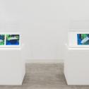 「新・今日の作家展2020 再生の空間」 山口啓介《歩く方舟のfragment / water line》2019年 展示風景 photo:Ken KATO